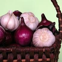 Halitosis-Avoid Onions and Garlic - Kenosha Dentist